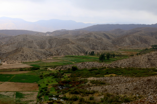 Peru (818)