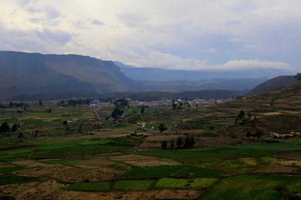 Peru (833)